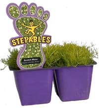 Stepables