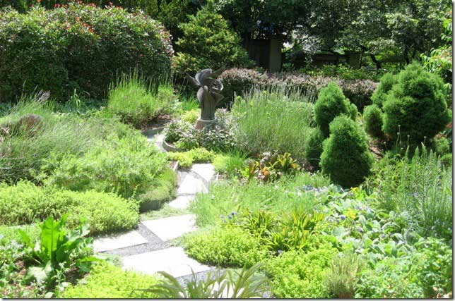 Water Conservation In The Landscape