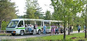tram_tour