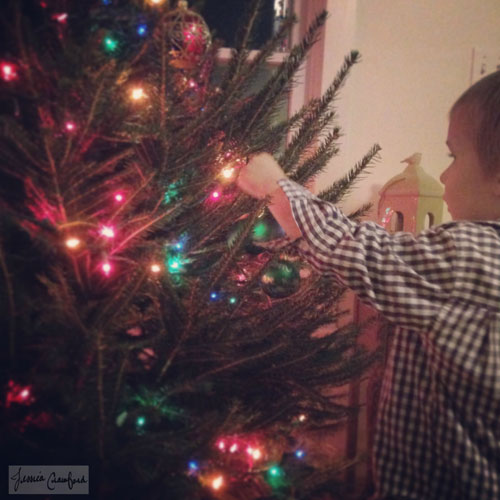 Trimming-the-Christmas-Tree