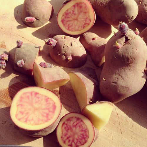 French-Fingerling-Potatoes