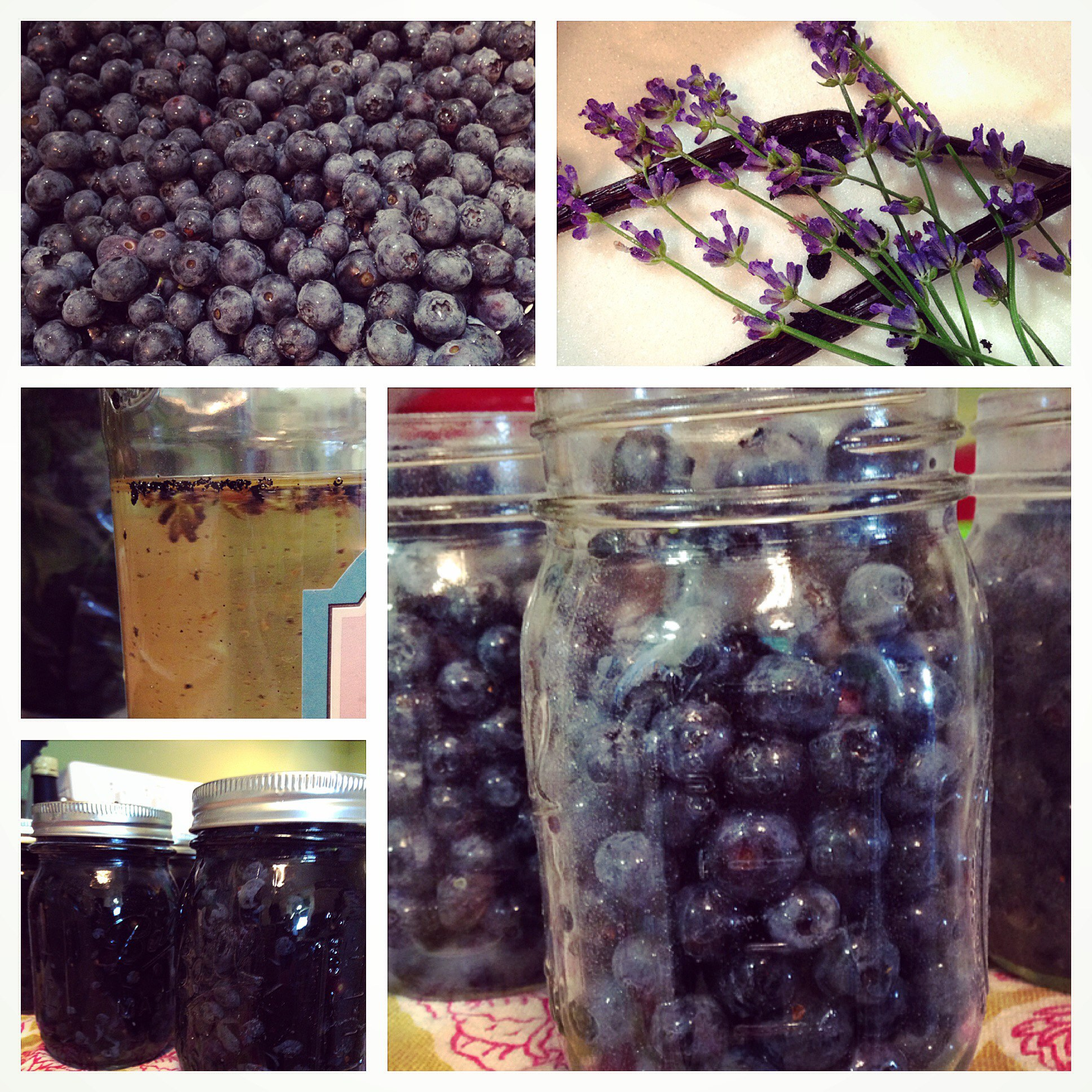 Whole Blueberries in Lavender and Vanilla Bean Syrup
