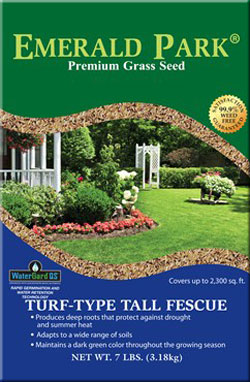 emerald park turf type tall fescue