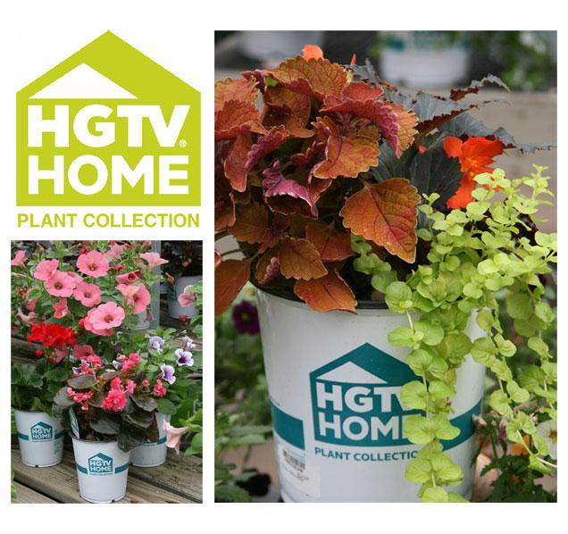 hgtv-home