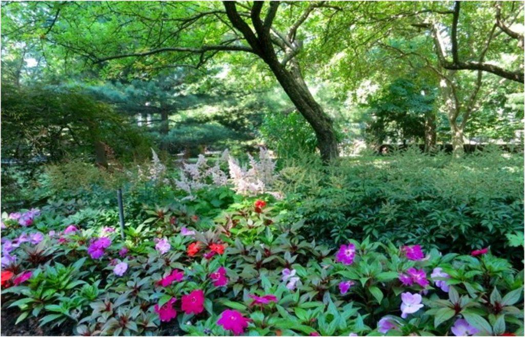 father's-garden