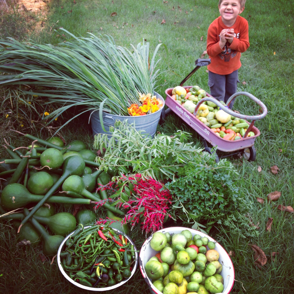 grayson-and-summer-harvest