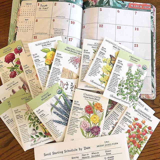 Botanical Interest Seeds