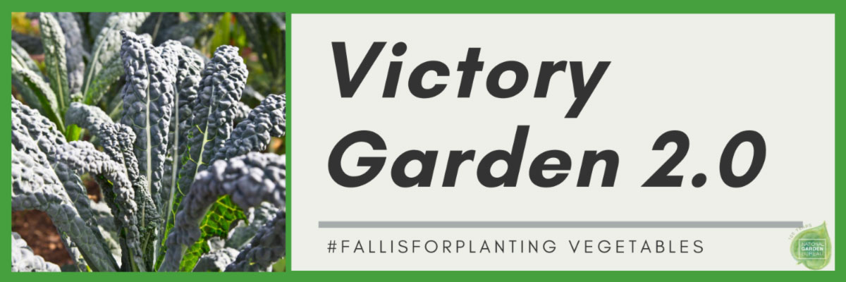 victory garden 2.0