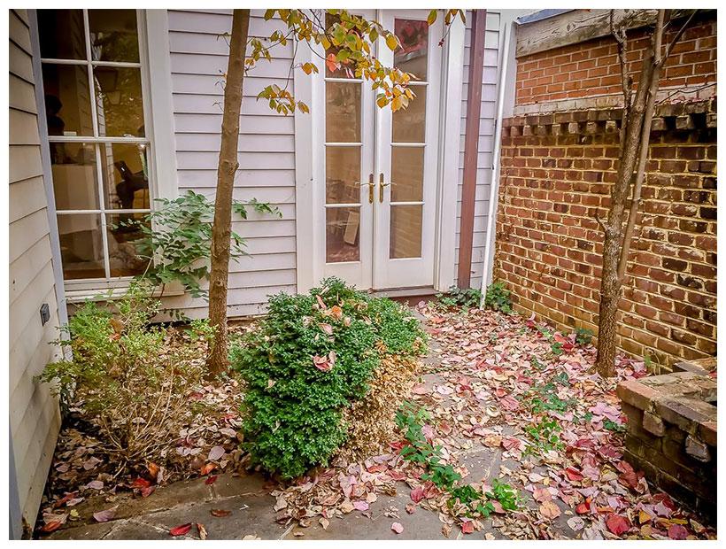 fall clean up courtyard