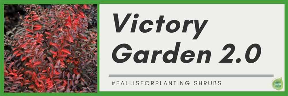 victory garden banner shrubs