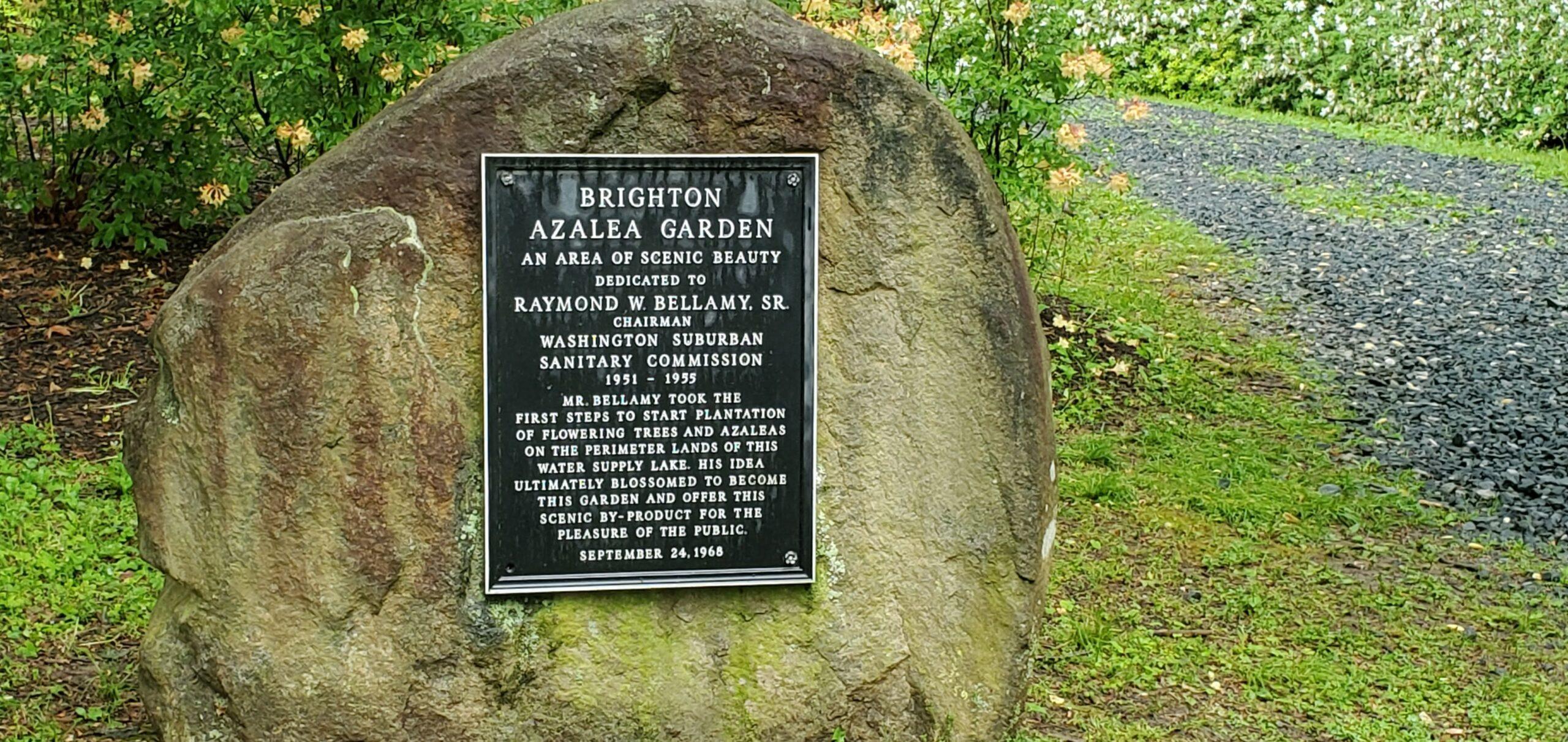 Brighton Dam's Azalea Garden Sign