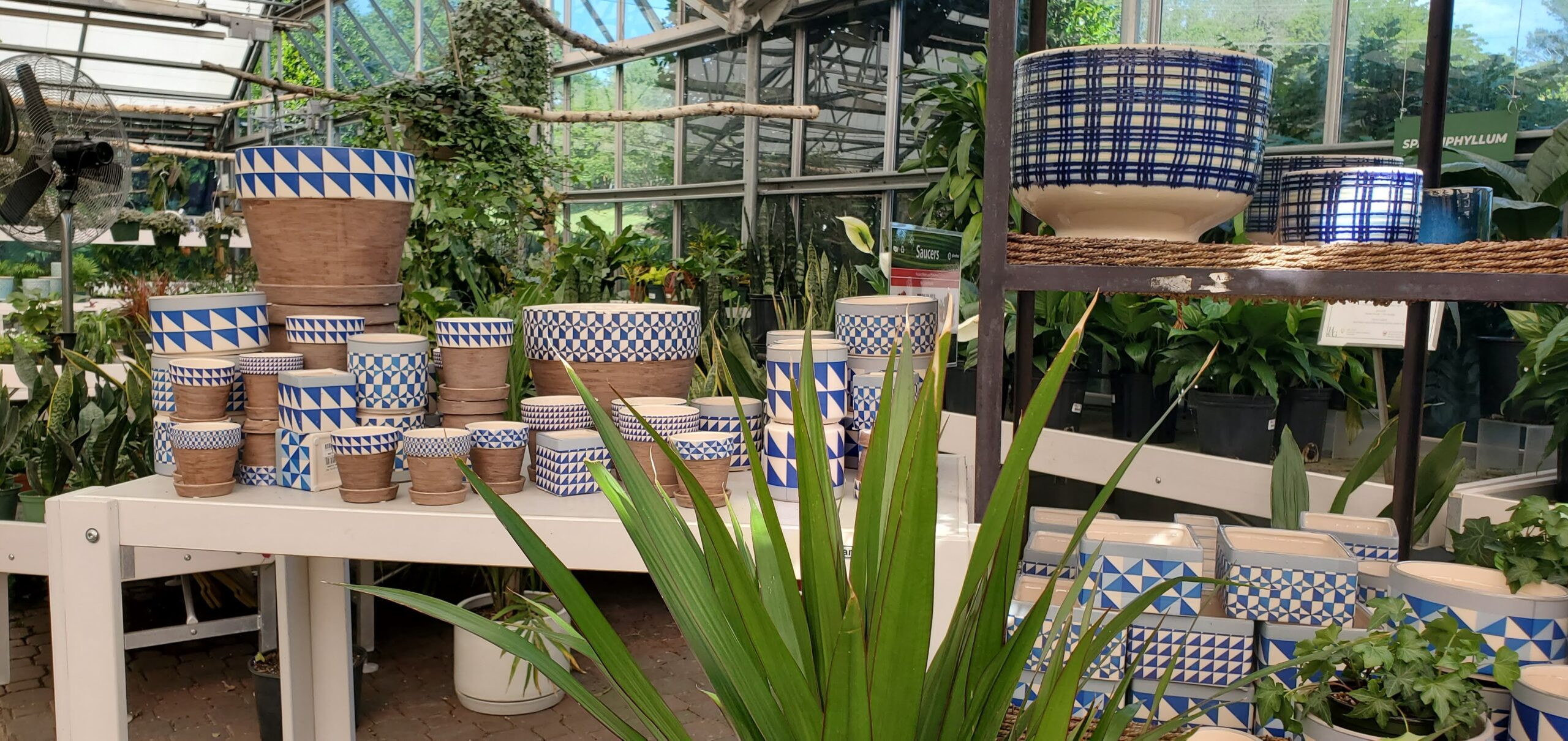 Homestead Gardens Houseplants