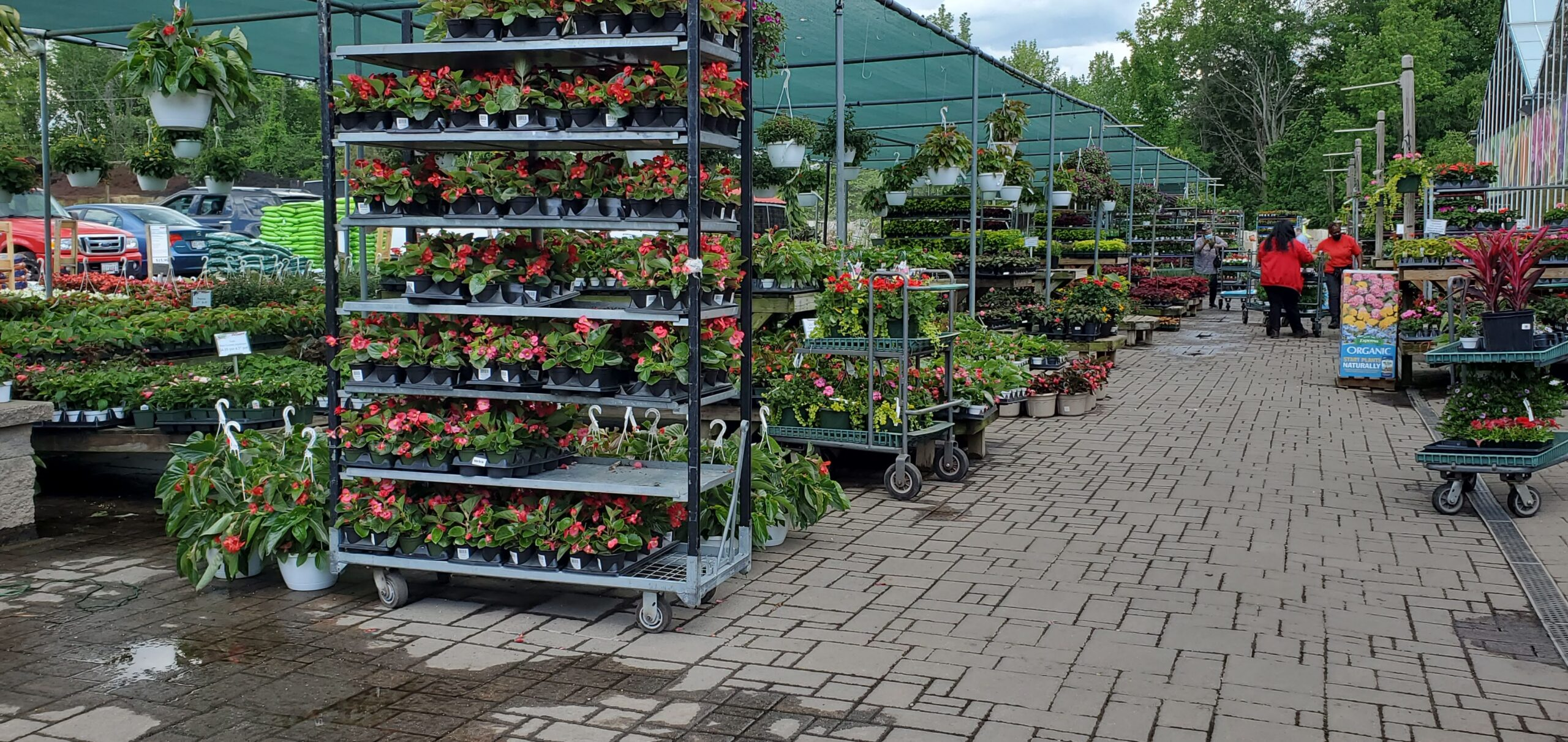 Patuxent Nursery Annuals