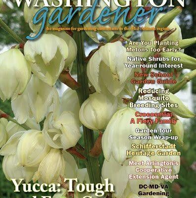Cover Of Washington Gardener Magazine