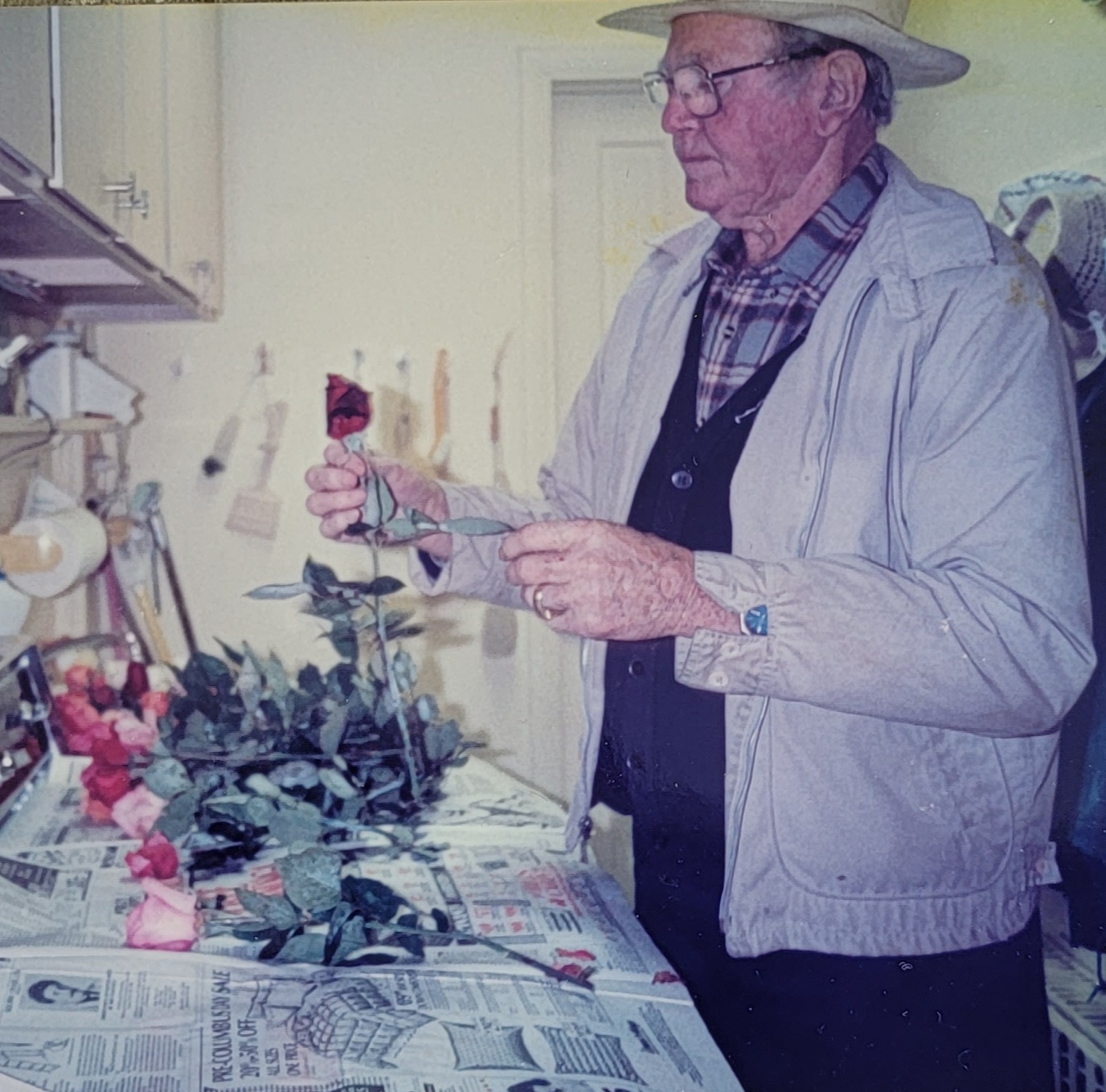 Albert Behnke Fixing His Roses