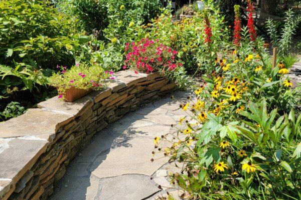 Zabrene Scapes Cantwell's Backyard Garden